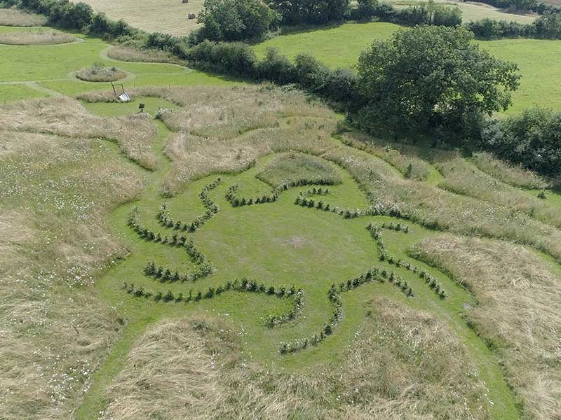 Domaine du Denais - labyrinthe naturel